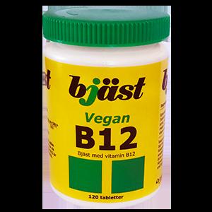 b12 i kosten